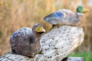 Bild zeigt das aus Holz gefertigte Entenpäärchen auf dem Skulpturenweg